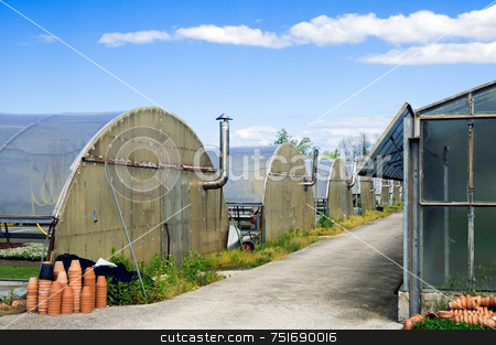 Greenhouse stock photo, Half-circle shaped greenhouses and flowerpots by Massimiliano Leban