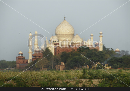 Distant Taj Mahal stock photo, Distant Taj Mahal in India by A Cotton Photo