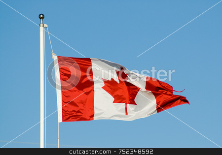 Canada Flag stock photo, A red and white Canada Flag blowing in the wind by Richard Nelson