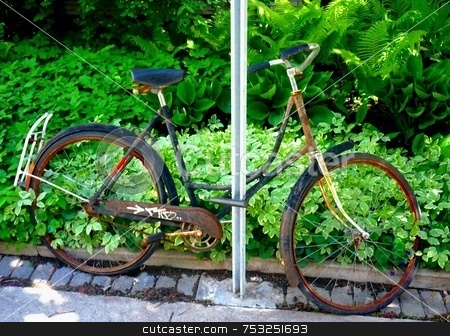 Green Machine - Ottawa 05 08 stock photo, Sadly neglected, this bicycle waits patiently for a tune-up.  I liked the leaves poking through the wheels! by Michael Ge . . . .
