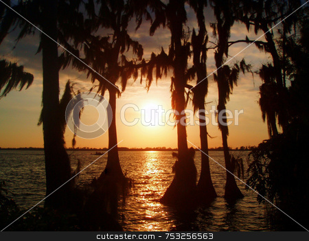 Sunset stock photo, A sunset through trees and over a lake. by Lucy Clark