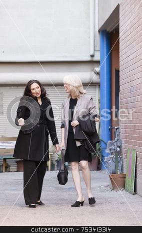 Businesswomen in an alley stock photo, Businesswomen walking and talking in an alley by Scott Griessel