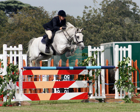 Horse Jump stock photo, Rider jumping over a fence with her horse by Lucy Clark
