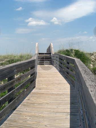 LeadingTrail stock photo, A trail that is leading to the beach that is on the other side by Rebecca Mosoetsa