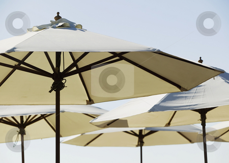 Beach Cafe Umbrellas stock photo, White canvas beach cafe unmbrellas. by Scott Griessel