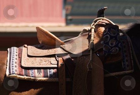 Shadowed Saddle stock photo, Horses saddle crossed by a diagonal shadow. by Scott Griessel