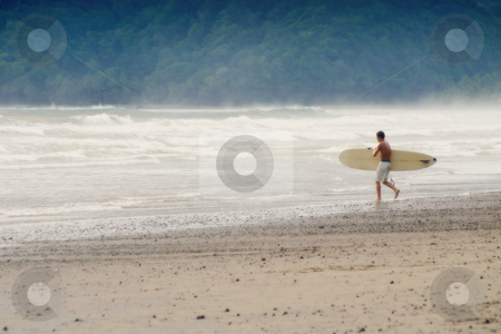 Heading Out stock photo, Surfer with his board heads for the water. by Scott Griessel