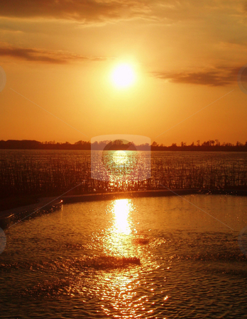 Sunset stock photo, Sunset over a lake with sun and water. by Lucy Clark