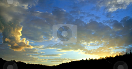 Sunset stock photo, A sunset with great clouds and a silhouette of trees. by Lucy Clark