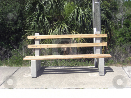 The Park Bench stock photo, An isolated park bench on a concrete slab has a forest as a background by Rebecca Mosoetsa
