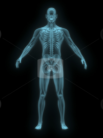 X-ray of man blue. front view. stock photo, X-ray of man blue. front view on black background by John Teeter