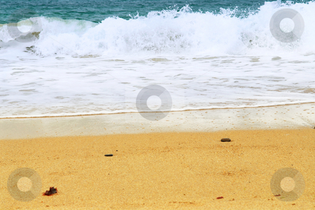Sandy ocean beach stock photo, Ocean wave advancing on a sandy beach by Elena Elisseeva