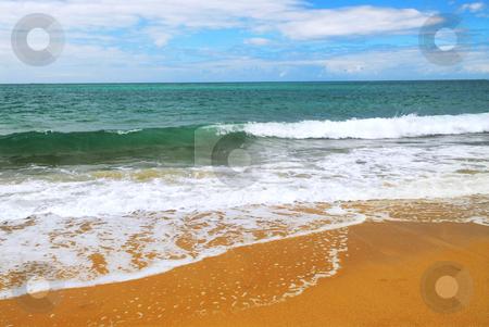 Sandy ocean beach stock photo, Ocean wave advancing on a yellow sandy beach by Elena Elisseeva