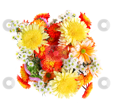 Flower bouquet stock photo, Bouquet of flowers, top view, isolated on white background by Elena Elisseeva