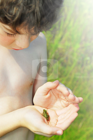 Boy holding a frog stock photo, Young boy holding a tiny frog in his hands by Elena Elisseeva