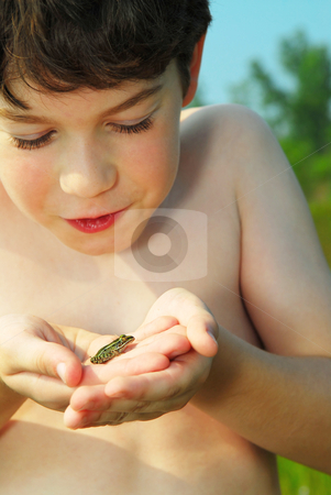 Boy with a frog stock photo, Young boy holding a tiny green frog in his hands by Elena Elisseeva