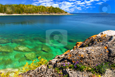 Scenic lake view stock photo, Beautiful view of a scenic lake with clear water. Georgian Bay, Canada. by Elena Elisseeva