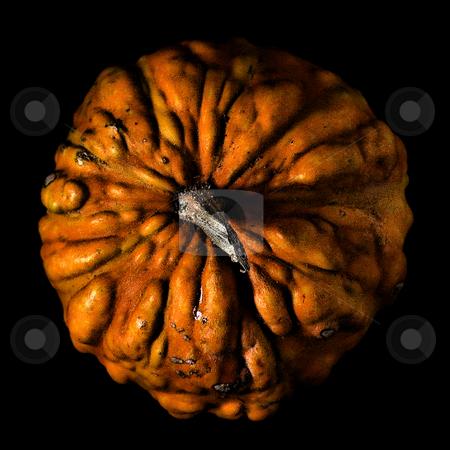 ... a small pumpkin stock photo,  by emiliano beltrani