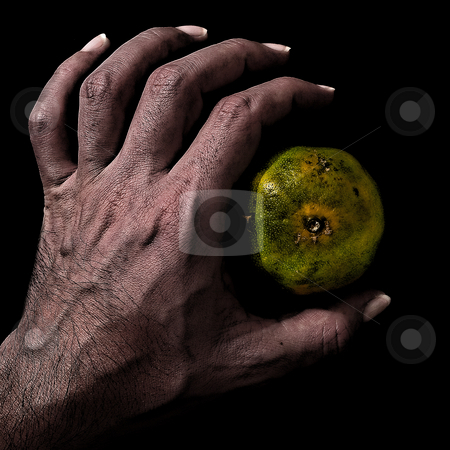 ... an hand on an almost perfect fruit stock photo,  by emiliano beltrani