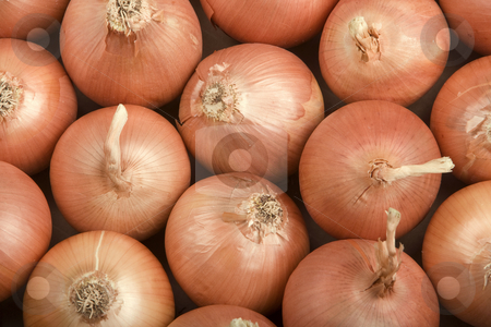Onions stock photo, Onions Filling the Frame by Scott Griessel
