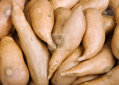 Sweet Potatoes stock photo, Red Sweet Potatoes that fill the Frame by Scott Griessel