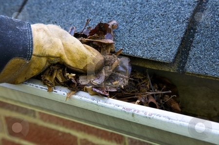 Fall Cleanup - Leaves in Gutter stock photo, A fall tradition - cleaning the gutters of leaves. Here, we see them clogging the gutters of a traditional home. Could be used for advertising/clean up articles/etc. Narrow DOF by Mitch Aunger