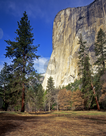 El Capitan 2 stock photo, El Capitan in Yosemite National Park, California. by Mike Norton