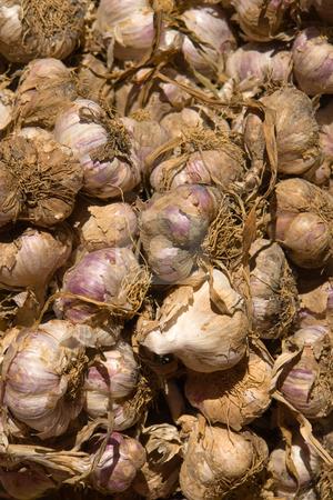 Garlic stock photo, Http://de.wikipedia.org/wiki/Knoblauch by Wolfgang Heidasch