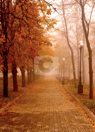 Autumn Mist stock photo, Autumn fog hid the walkway of the park by tending