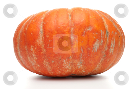Ripe orange organic pumpkin stock photo, Ripe orange organic pumpkin Isolated on white background. by Homydesign