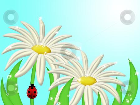 Ladybug Climbing Up Daisy Flower Stem stock photo, Red Ladybug Climbing Up Daisy Flower Stem Illustration by Thye Gn