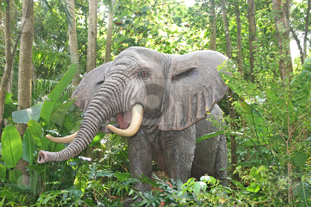 Elephant stock photo, An elephant in the wild showing its trunk by Lucy Clark