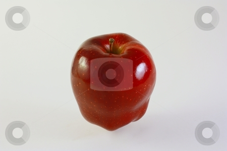 Red Apple stock photo, Red Apple by Gregory Dean