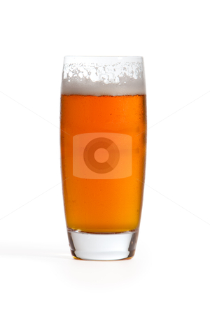 India Pale Ale stock photo, India pale ale in glass on white background. by Glenn Price