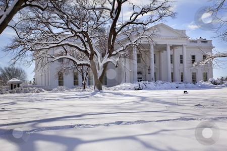 White House Trees After Snow Pennsylvania Ave Washington DC stock photo, White House Trees After Snow Pennsylvania Ave Washington DC by William Perry