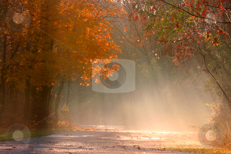 Misty autumn landscape stock photo, Autumn bike trail in Michigan's state park by Sreedhar Yedlapati