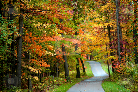 Autumn bike trail stock photo, Walk way in the park through colorful trees by Sreedhar Yedlapati