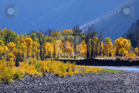 Autumn landscape stock photo, Scenic autumn landscape in North west Wyoming by Sreedhar Yedlapati