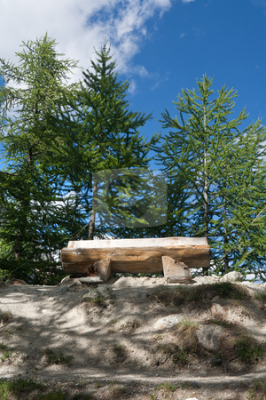 Alpine bench stock photo, wooden bench betwwen trees in Italian Alps. Image slightly processed with hdr technique by ANTONIO SCARPI