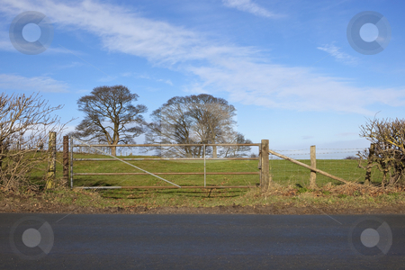 February field gate stock photo, english landscape with a view from the highway of a metal gate to a grassy meadow with mature trees and blue sky by Mike Smith