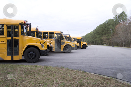 School Bus stock photo, A line of school busses in a parking lot by Robert Byron