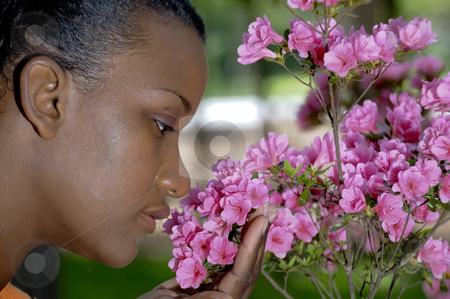 Smelling Flowers stock photo, A young black woman stopping to smell the flowers by Robert Byron