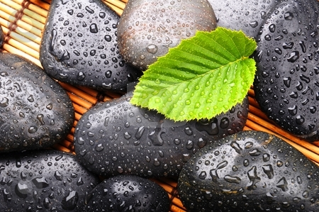 Zen stone stock photo, zen stone with green leaf or water drops showing spa or wellness concept by Gunnar Pippel