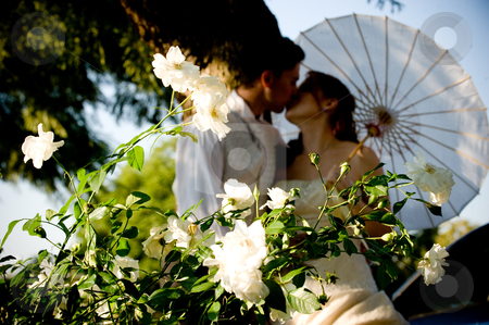 Just Married Couple Standing And Kissing In White Flower Bed Stock Photo