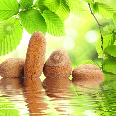 Zen stones stock photo, zen stones and green summer leaves with water reflection by Gunnar Pippel