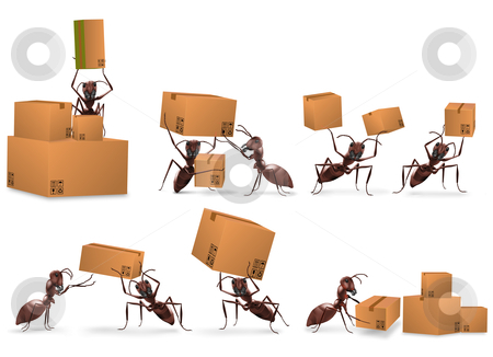 Package delivery mail order stock photo, package delivery mail order cardboard box packet send by ants by Dirk Ercken