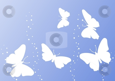 Delightful butterfly stock photo, butterfly collection - delightful butterfly with its vibrant colors  by Stelian Ion