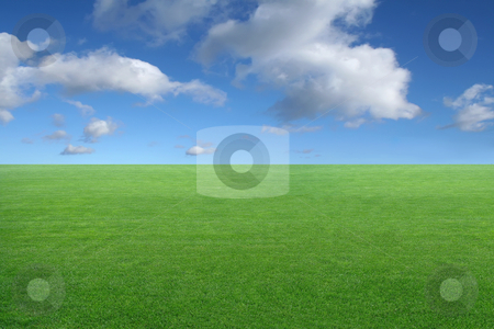 Landscape - green grass on blue sky background stock photo, new peaceful desktop wallpaper - green grass on blue sky background by Stelian Ion