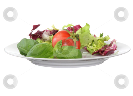 Vegetarian food (salad tomato basil) stock photo, Plate with salad tomato and brasil by Piotr_Marcinski