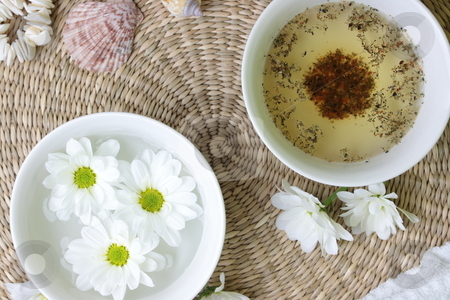 Spa design stock photo, Spa design with herb and daisy by Piotr_Marcinski